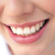 پلاک دندان 21