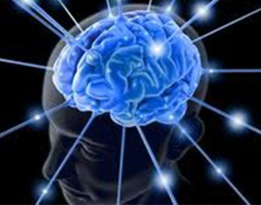 توصیه هایی جهت تقویت نیمکره های مغز