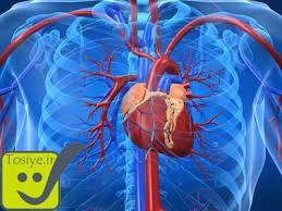 آمار بیماری های قلبی