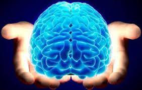 آب بخورید تا مغزتان سریع کار کند!